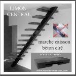 limon central, le caisson résine béton ou aspect bois couvre le support acier